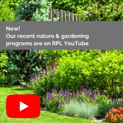 New programs on YouTube!
